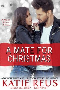 a_mate_for_christmas_755x1133
